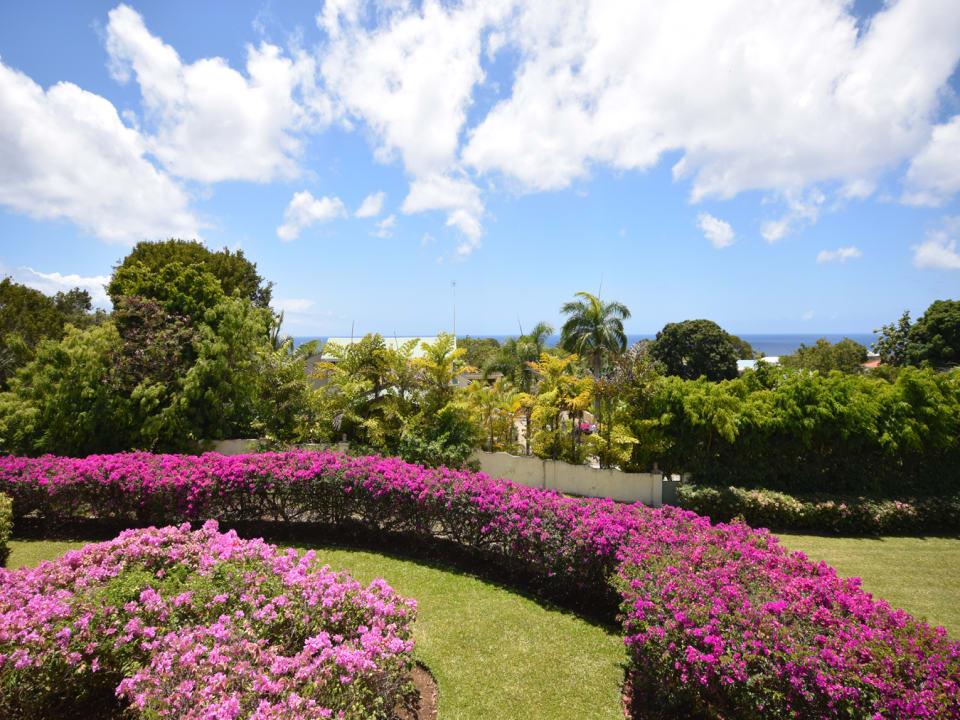 Gorgeous garden & sea views