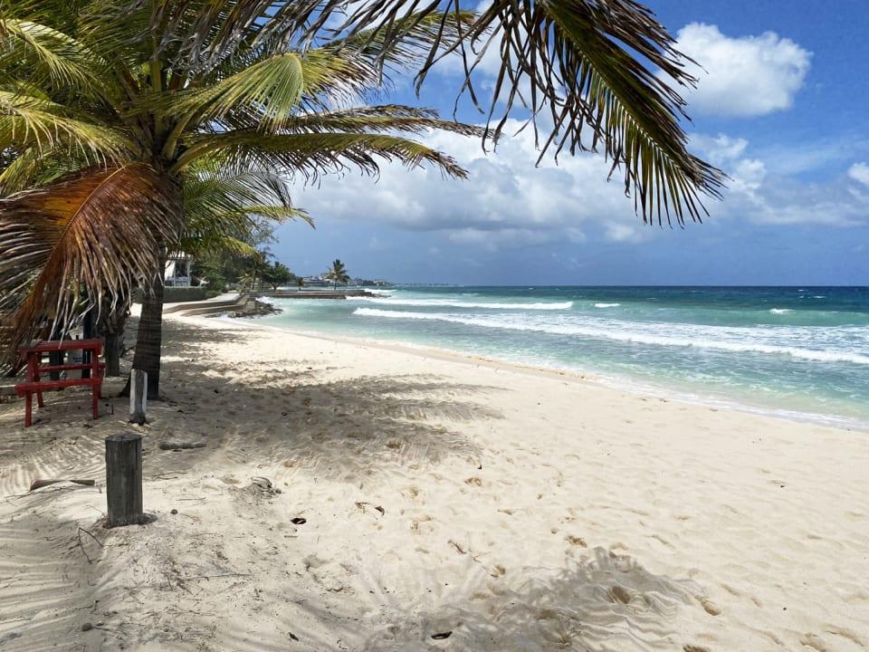 Gorgeous Beach Across The Street