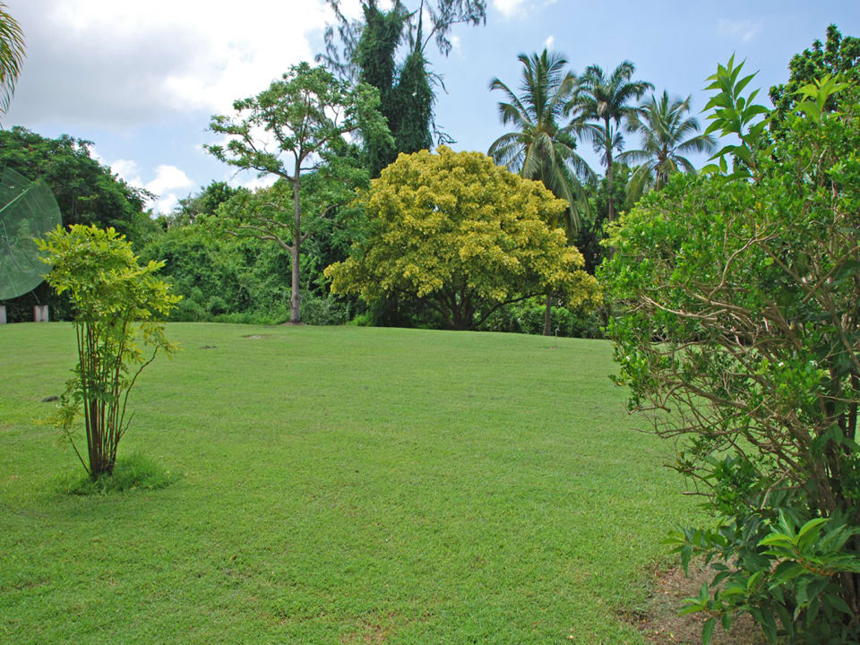 Beautifully Landscaped Gardens with fruit trees surround the property