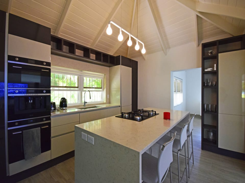 Top of the line modern kitchen