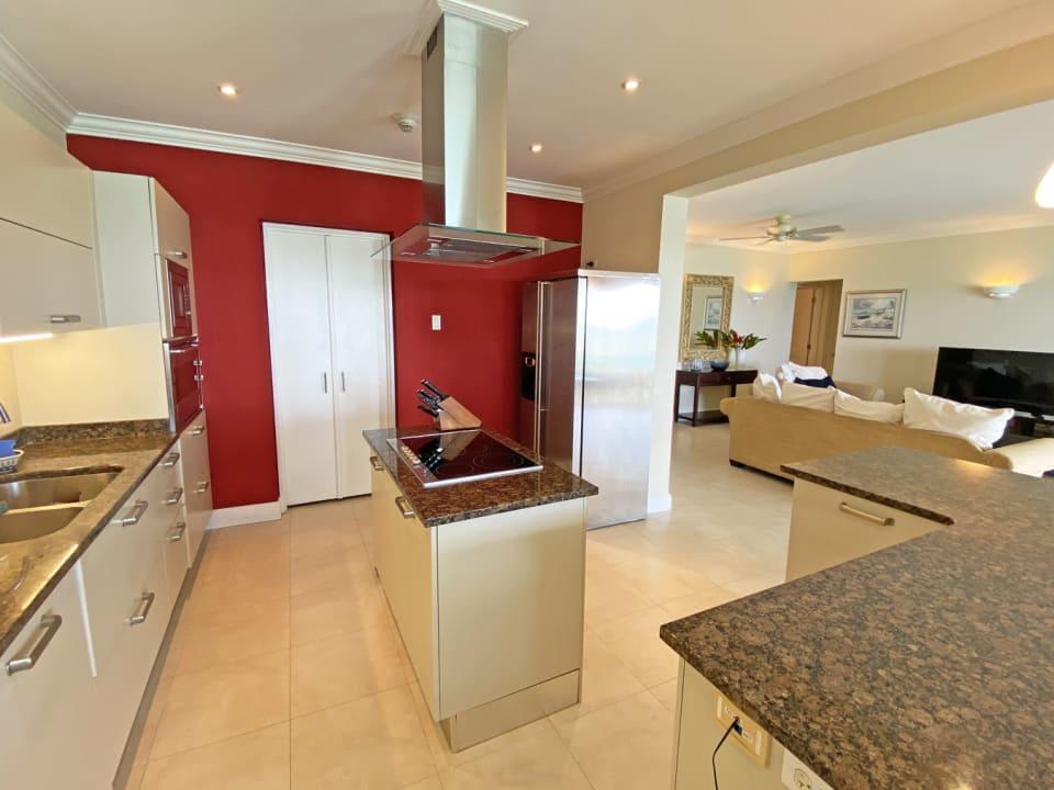 Open plan modern kitchen