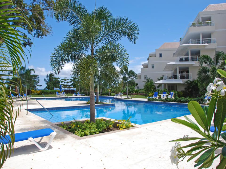 Pools at Palm Beach