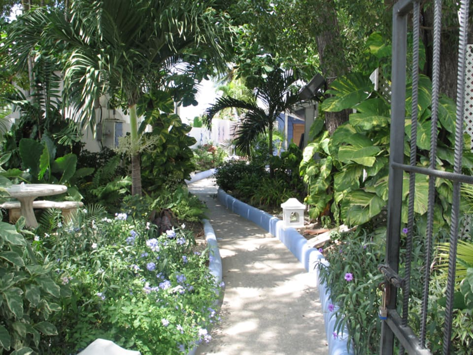Pathway to Blue Monkey on beachside
