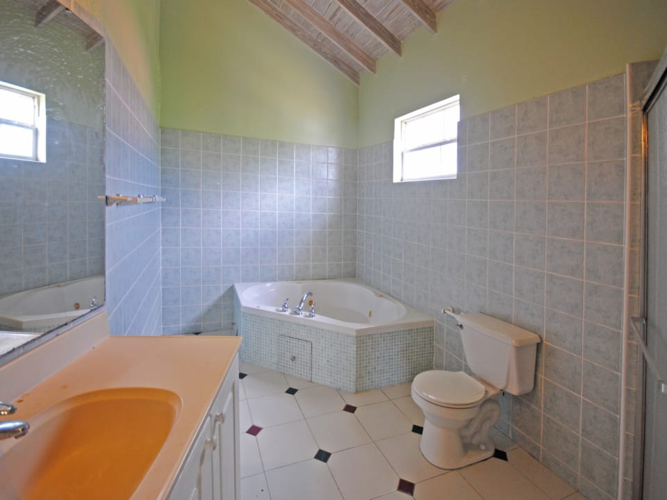 Mater bathroom with tub and shower