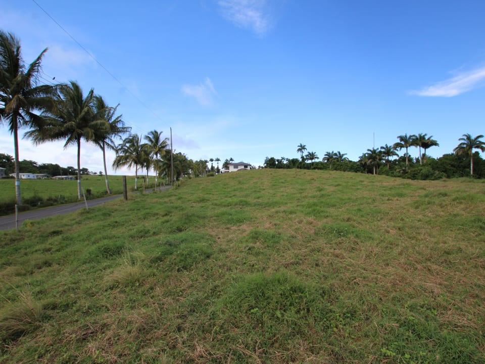 Lot facing north-east