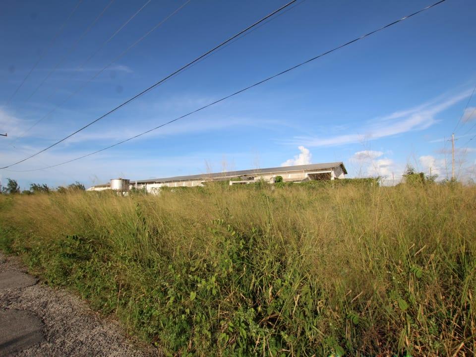 Lot facing east
