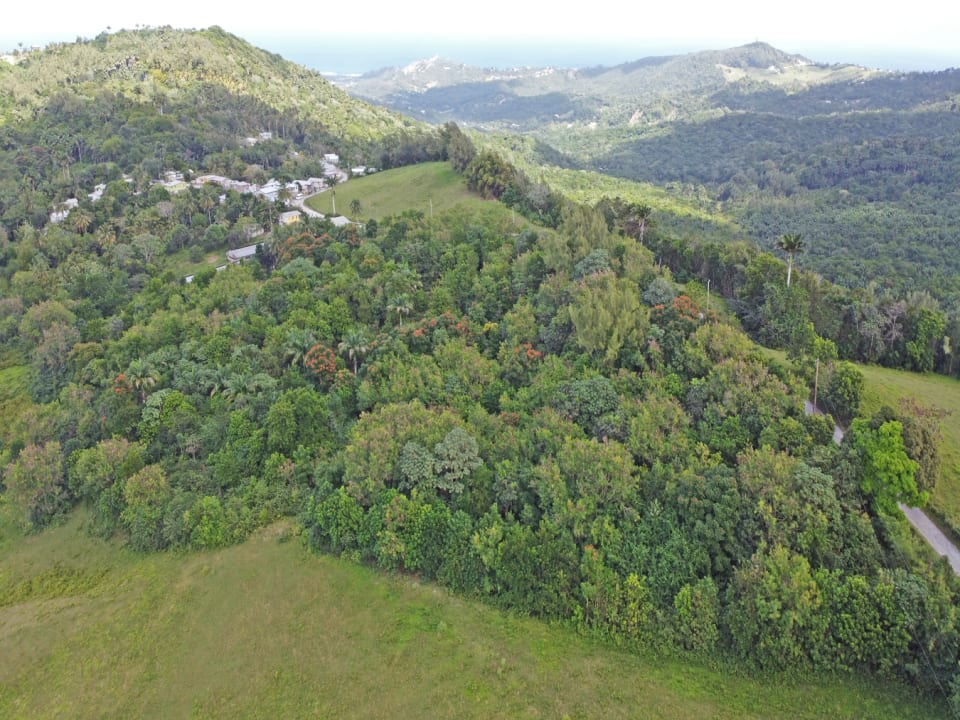 Aerial view facing East