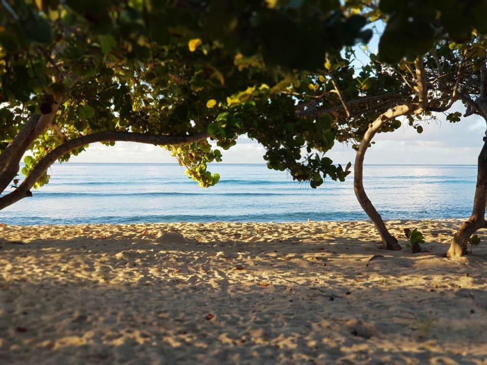 Beach just footsteps away