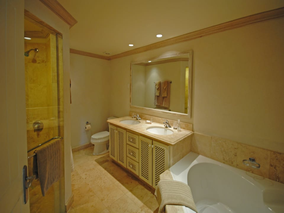 Main bathroom with tub and shower