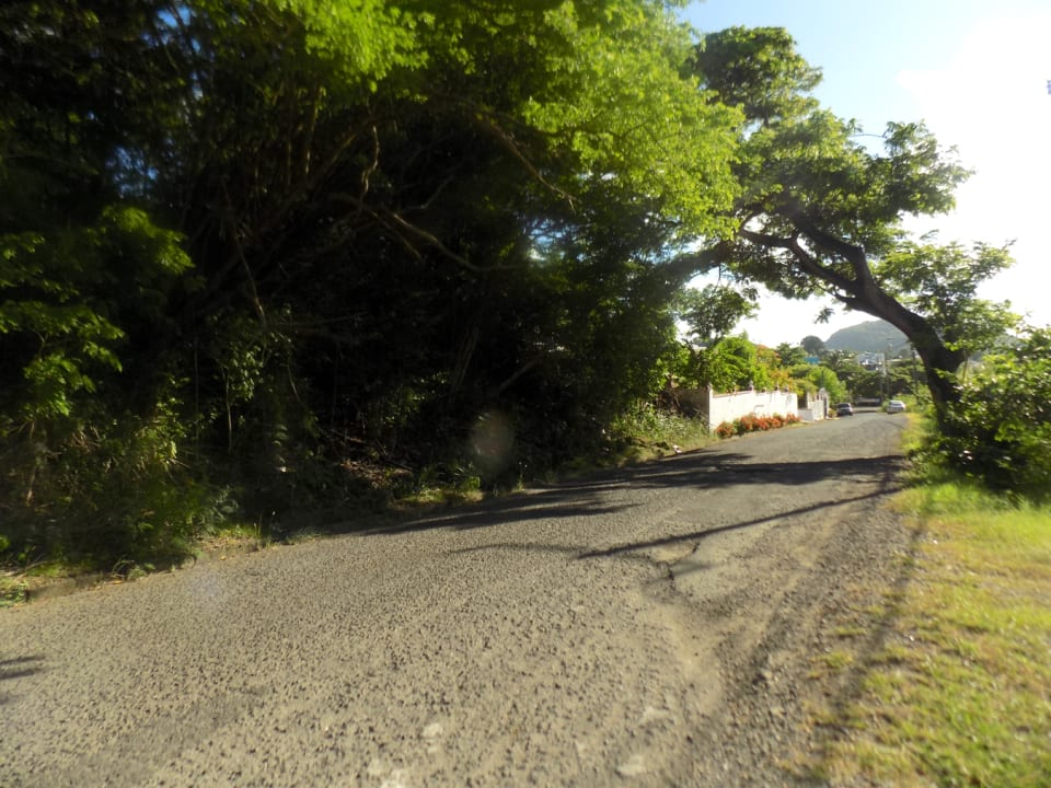 Main access road to the lot
