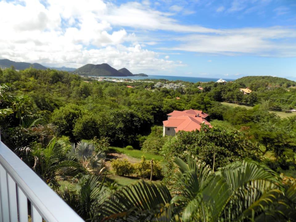 Stunning Tropical Vistas