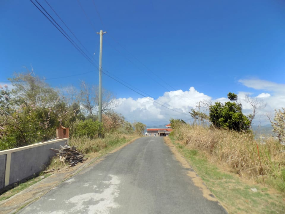 Road leading to the lot