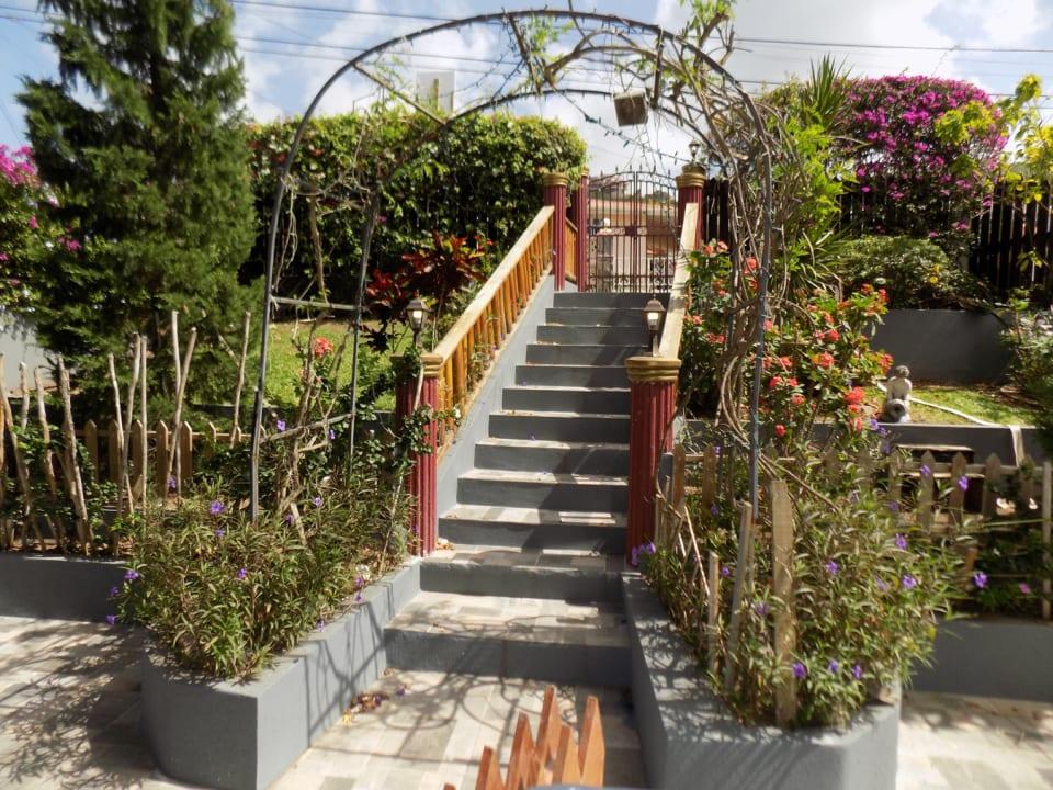 Downstairs Garden Area
