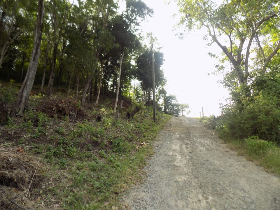 Paved road to the lot - the lot is to the left