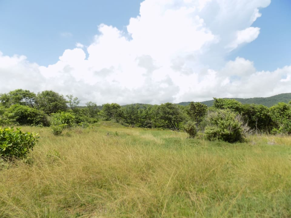 Expansive lands with development potential