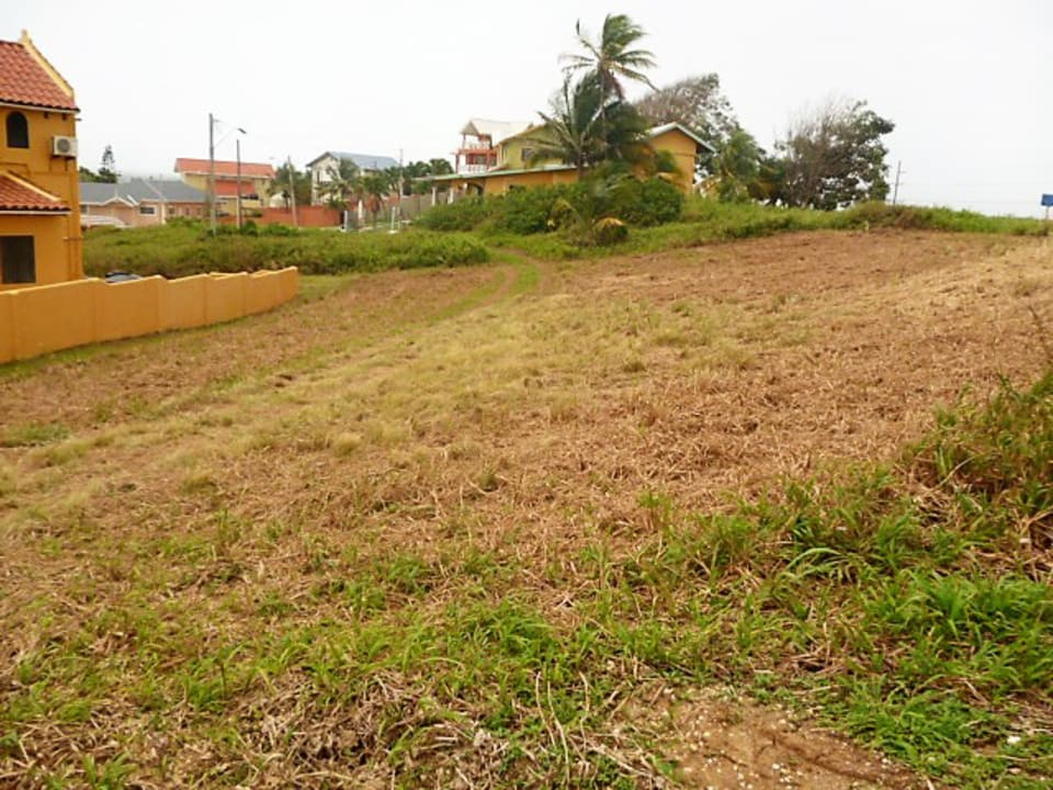 View of Land