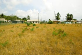 Eastern View of lot 4