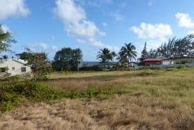 Lot view facing south