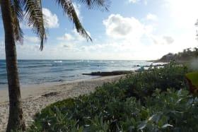 Beach at Surfers Bay