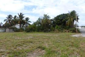 Far Corner of lot facing South