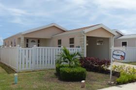 Bougainvillea Front