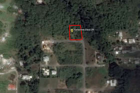 Google image of lot 29