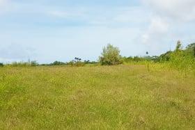 Road View of Littleland Lot