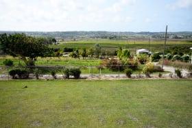 Expansive lawn