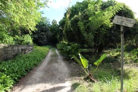 Driveway to The Mill House