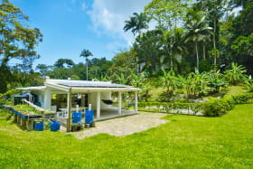 Home set within tropical gardens