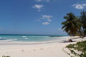Nearby Barbados Beach