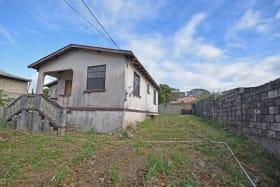 Northwestern elevation - smaller house