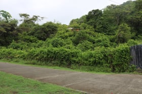 Hope City Land Lot