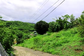 Paved road and lot view