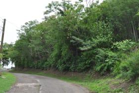 Grand Anse Hillside Lot
