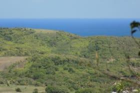 North-Eastern Elevation