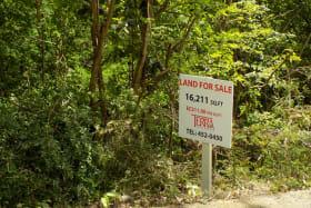Near Access Road