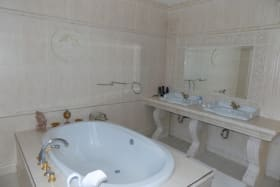Master Bathroom with Jacuzi Tub
