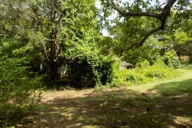 Entrance to Cottage