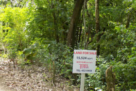 Marigot Bay Land No 112