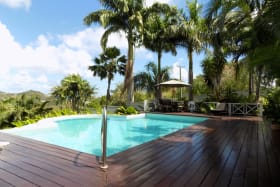 Pool Deck & Palm Trees