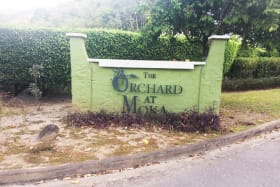 The Orchard Lot 7