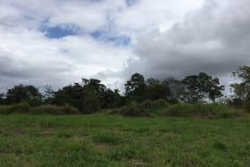 3.2 Acres on Solomon Hochoy Highway