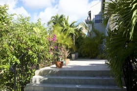 Steps from Terrace to Garden