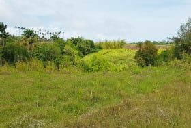 Littland lot overlooking the gully nearby