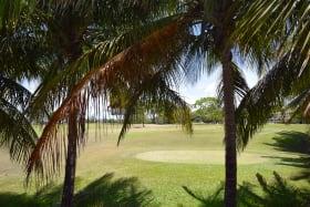 Golf Course Views - Barbados