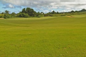 Direct View of The Green