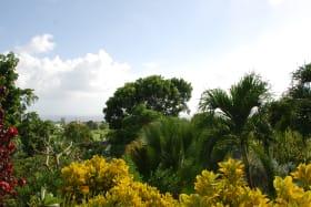 Distant sea views