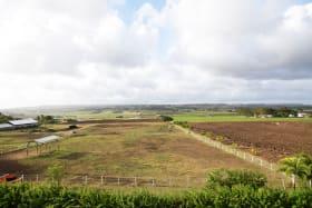 Panoramic Country Views