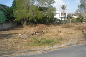 View of lot from roadside